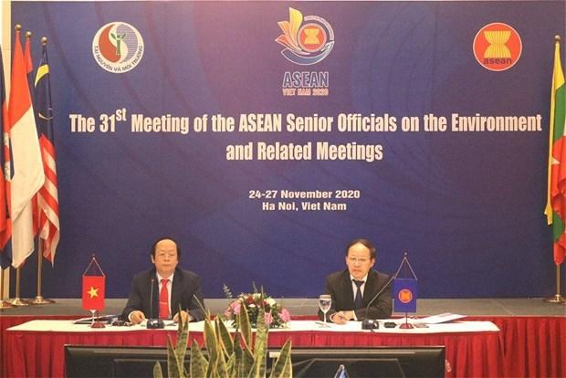 第31届东盟环境高级官员会议面向可持续生态系统 hinh anh 1
