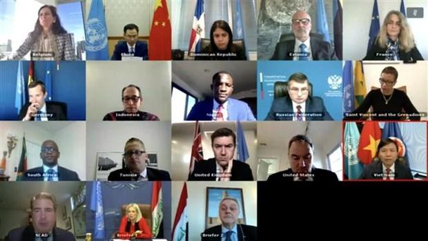 越南与联合国安理会:越南呼吁国际社会兑现对伊拉克援助的承诺 hinh anh 1