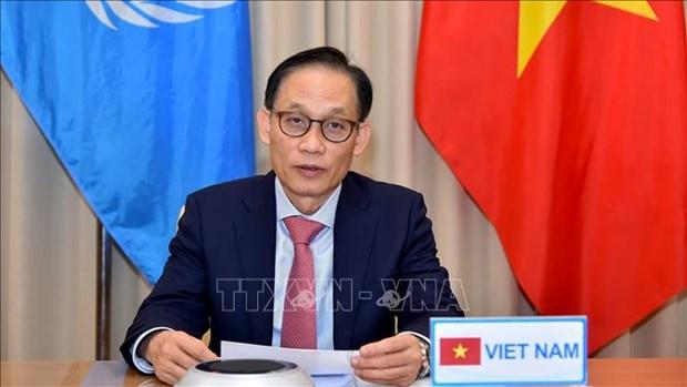越南为联合国安理会作出积极和负责任贡献 hinh anh 1