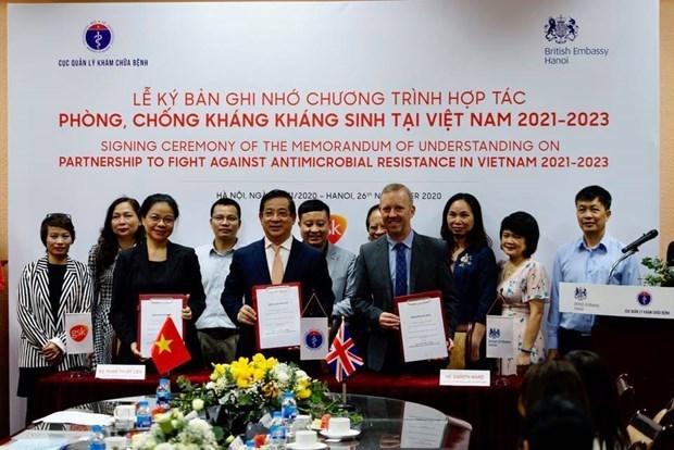 越南与英国在抗生素耐药性领域展开合作 hinh anh 1