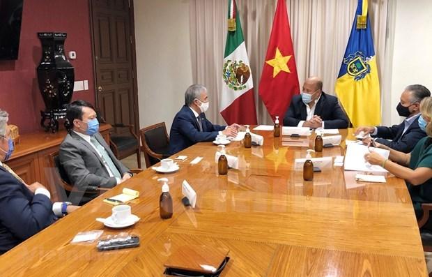 促进墨西哥哈利斯科州与越南各地方的贸易关系 hinh anh 1