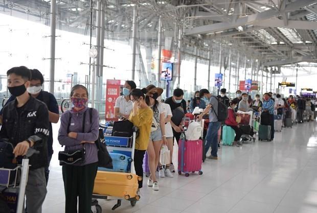 将在菲律宾滞留的近240名越南公民接回国 hinh anh 1