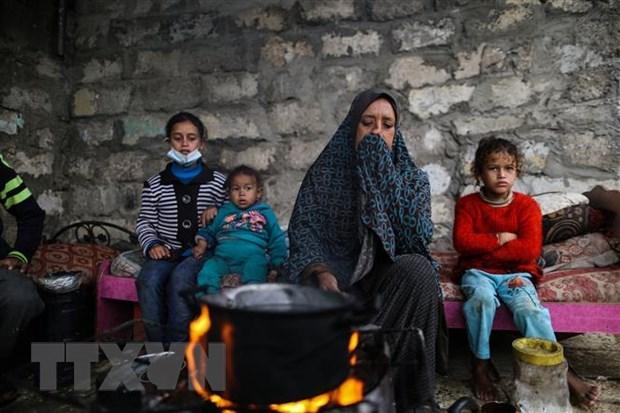"""阮富仲致电祝贺""""声援巴勒斯坦人民国际日"""" hinh anh 1"""
