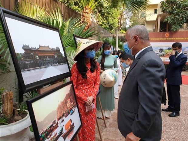 为加大越南-埃及文化交流搭建桥梁 hinh anh 2