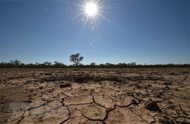 东盟与欧盟加强环境和气候变化领域的合作 hinh anh 1