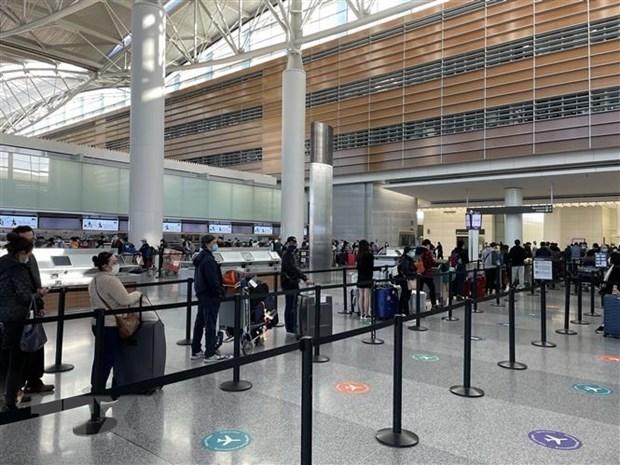 将在美国滞留的近360名越南公民接回国 hinh anh 1
