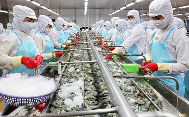 2020年越南水产品出口额预计达86亿美元 hinh anh 2