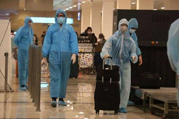 新冠肺炎疫情:将在新加坡的240余名越南公民接回国 hinh anh 1