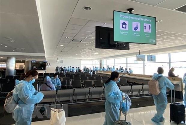 新冠肺炎疫情:将在美国的近360名越南公民接回国 hinh anh 1