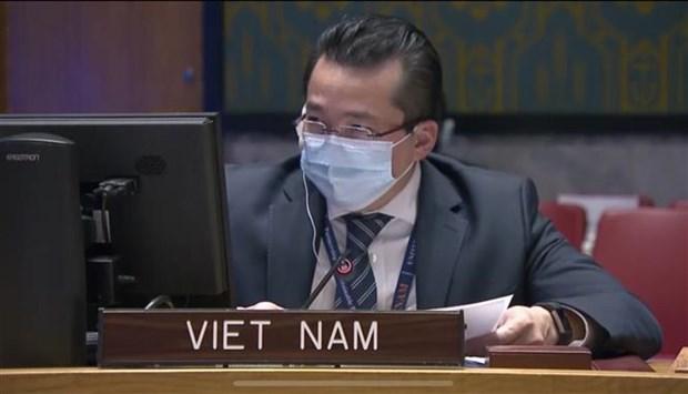 越南对刚果的暴力和动荡局势表示担忧 hinh anh 1