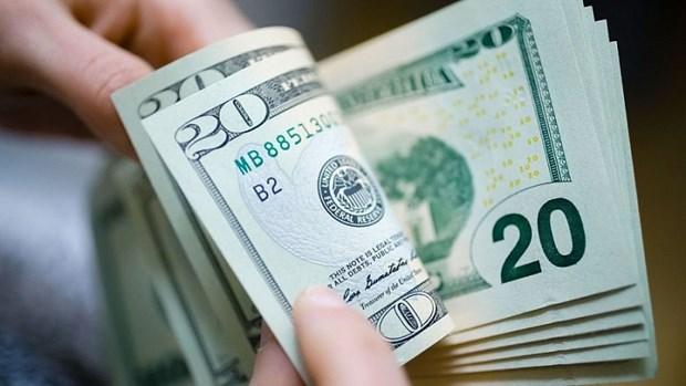 8日上午越盾对美元汇率中间价下调7越盾 hinh anh 1