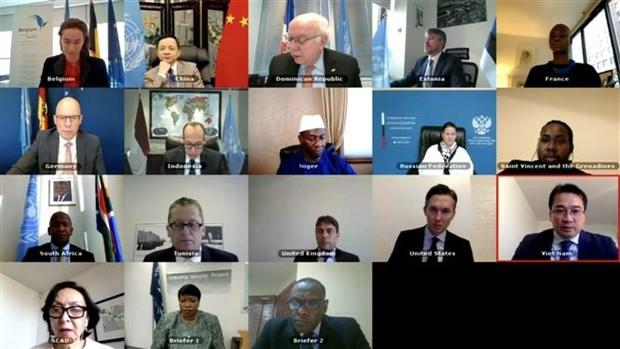 越南强调犯罪预防和惩治中的国家责任 hinh anh 1