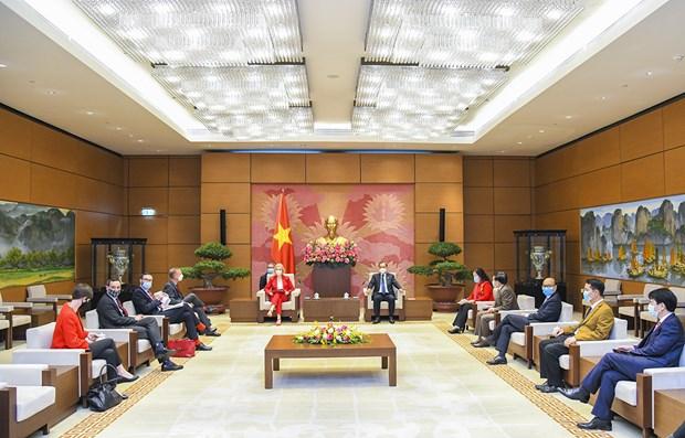 越南国会经济委员会主任武洪清会见英国国际贸易大臣伊丽莎白•特鲁斯 hinh anh 2