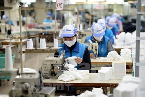 至2025年越南纺织品服装业力争实现出口额达550亿美元的目标 hinh anh 2