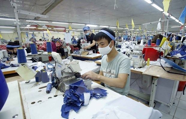至2025年越南纺织品服装业力争实现出口额达550亿美元的目标 hinh anh 1
