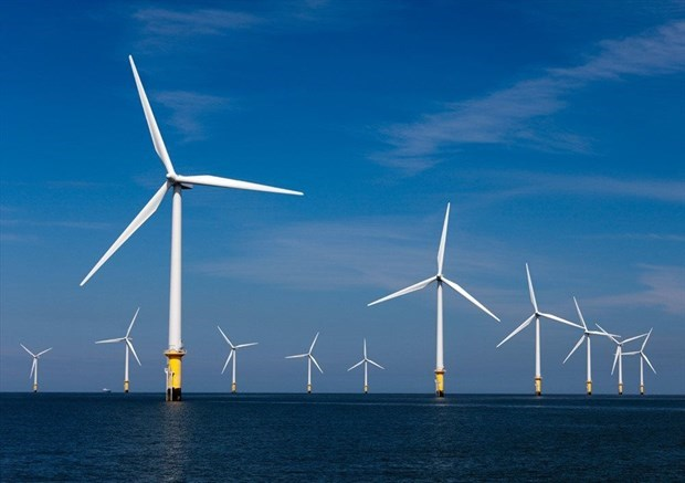 德国PNE集团计划在平定省投资建设风电项目 hinh anh 1
