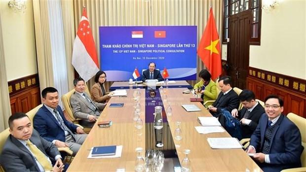 越南与新加坡举行第13次政治磋商 hinh anh 1