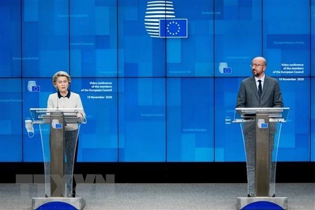 欧盟领导人表示希望与越南加强合作 hinh anh 1