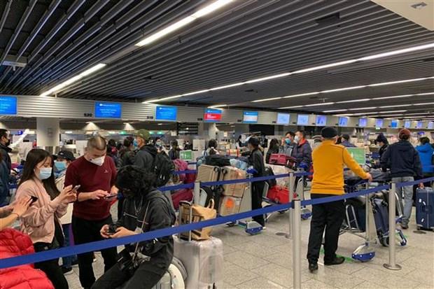 将在德国滞留的近310名越南公民安全接回国 hinh anh 1