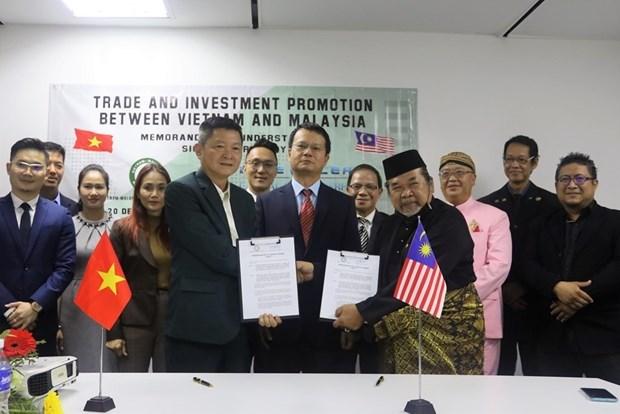 越南与马来西亚企业促进合作 hinh anh 1