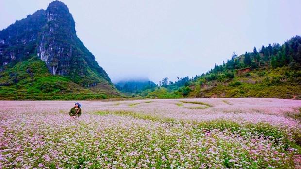"""河江省努力打造""""富有特色、安全、善友""""的旅游目的地 hinh anh 1"""