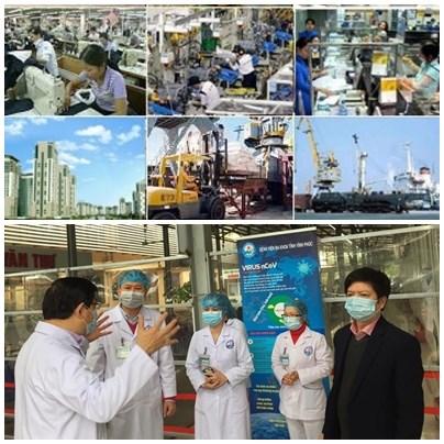 2020年是越南成功防疫和发展经济的一年 hinh anh 1