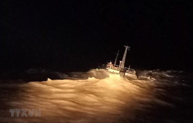 越南搜救船船长获国际海事组织表彰 hinh anh 1