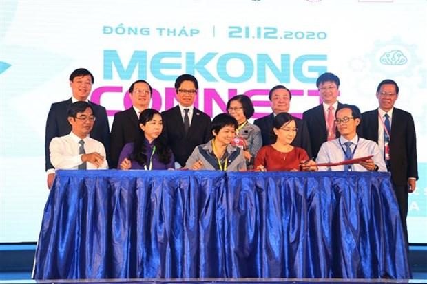 将九龙江三角洲服务产品引入全球价值链 hinh anh 2