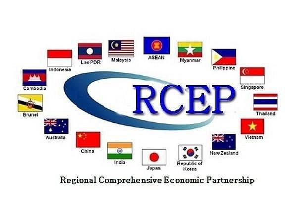 RCEP——识别机遇与挑战 hinh anh 2