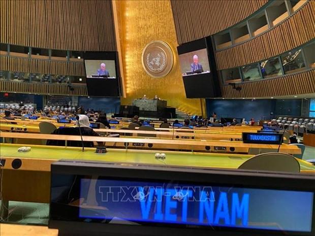 法国驻联合国大使:越南成功将东盟与联合国安理会联系起来 hinh anh 1