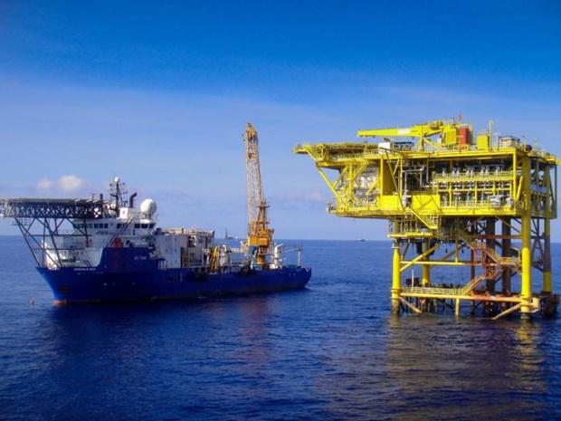 PVEP完成国内石油开采量220万吨的目标 hinh anh 1