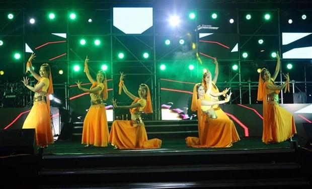 迎接2021年—神奇之夜艺术晚会在岘港市举行 hinh anh 2