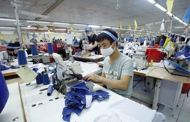越南纺织业和鞋业对越英自贸协定寄予厚望 hinh anh 1