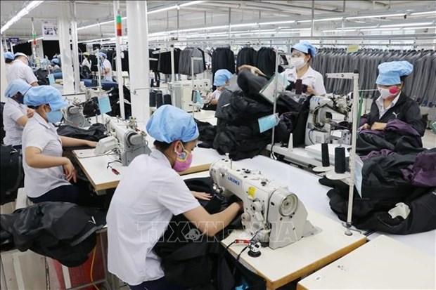 越南工贸部部长:充分利用电子商务带来的机遇,有效开发国内市场 hinh anh 2