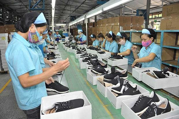 越南纺织业和鞋业对越英自贸协定寄予厚望 hinh anh 2