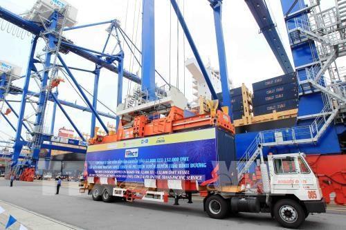 海防港将于2021年1月1日起展开电子港务服务 hinh anh 2