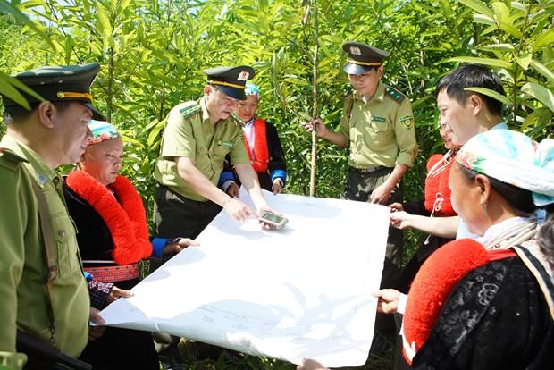 高平省保护森林 珍惜绿色 hinh anh 2