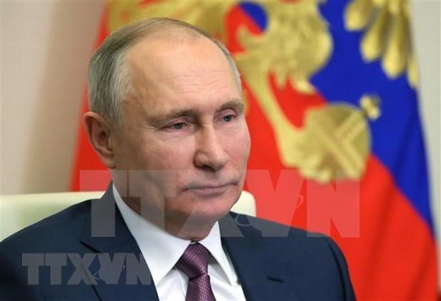 俄罗斯总统普京向越南致以新年和新春祝福 hinh anh 1