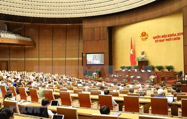 2020年越南国会的烙印 hinh anh 2
