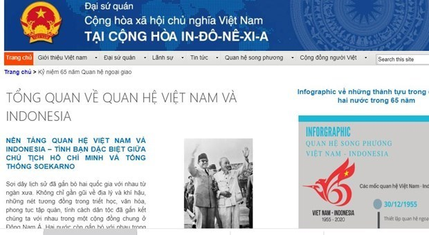 庆祝越南—印度尼西亚建交65周年专题页面开通 hinh anh 1