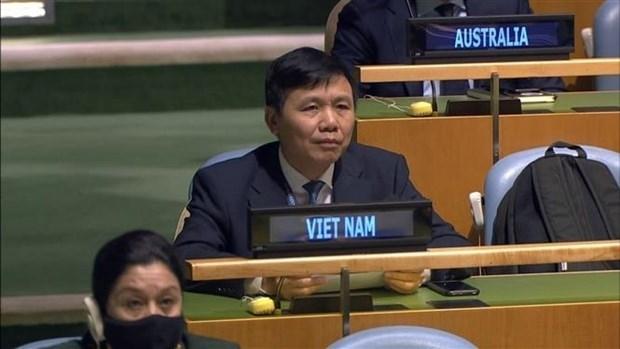 越南与国际携手应对新冠肺炎疫情 hinh anh 3
