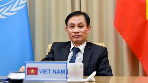 越南军队参加联合国维和行动有助于提升国家地位 hinh anh 3
