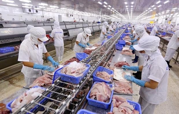 越南水产业充分把握各项自由贸易协定所带来的机遇 hinh anh 1