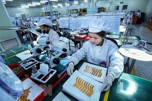 标普全球评级:越南经济有望实现强劲复苏 hinh anh 1