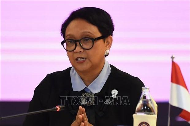 印度尼西亚呼吁东盟与中国恢复COC谈判 hinh anh 1