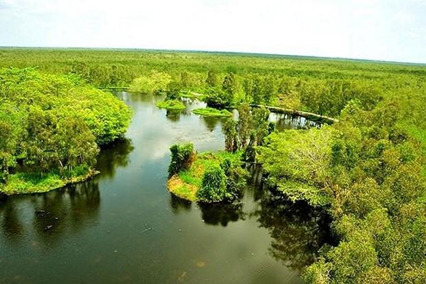 越南力争实现生态系统恢复的目标 hinh anh 2
