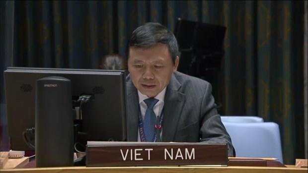 越南与联合国安理会:越南承诺促进联合国宪章和国际法的作用 hinh anh 1