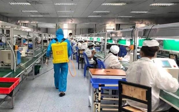 北江省逐步实现稳生产稳防疫双重目标 hinh anh 1