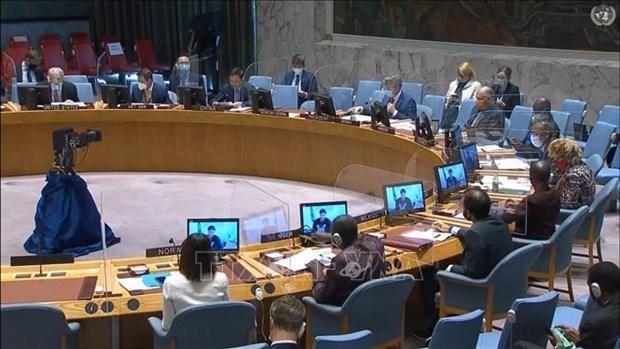 越南与联合国安理会:越南呼吁加强对苏丹平民的保护 hinh anh 1