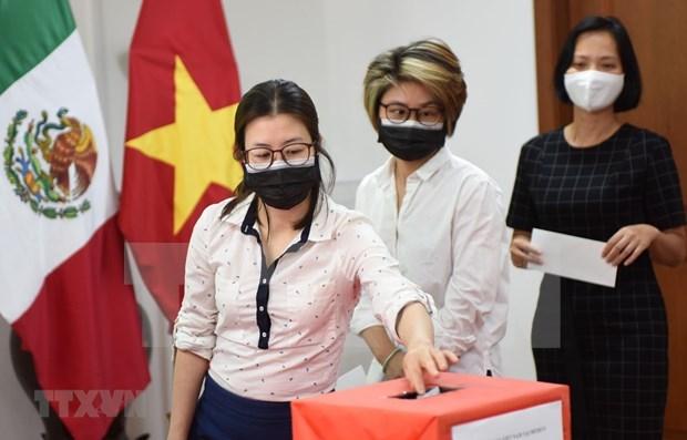 海外越南人积极行动 助力越南抗击疫情 hinh anh 1